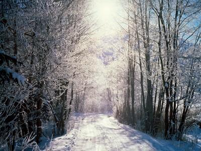 I Любовь Winter! <3