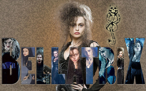 Im Annie from Europe. i used to hate Harry potter but then I rembered how many good times me and my little sis had doing Harry Potter related stuff. Also when I heard Twilight would replace it something just made me mad and like Harry Potter more.I honestly dont like the heros XD but I ♥ Bellatrix she kicks a**.