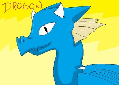 I focused on the dragon XD