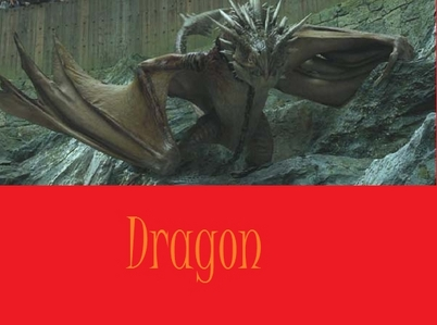 dragon its a hungarian horntail