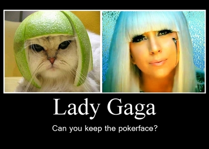 I hate Lady Gaga.