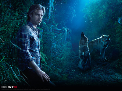 This is my desktop hình nền :P. Sam Merlotte from True Blood
