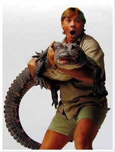 HE IS NOT MY CRUSH but i relly looked up to him and ever scinc he died i ben trified of sting rays but then i over come me fear last বছর =D http://www.yardwear.net/blog/2006/09/04/Crocodile+Hunter+Steve+Irwin+Killed.aspx now i got a fear for orcas