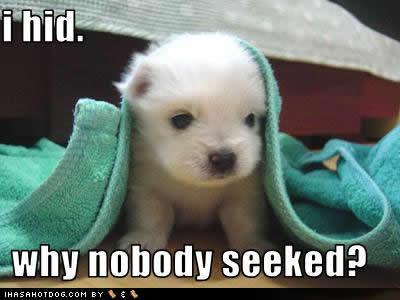awwww...nobody seeked