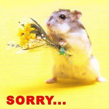 I'm sorry....=/