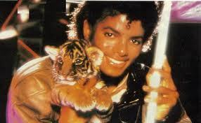 i believe everyone on the MJ Club is mostly nice we r like family on here. But some people are really mean/rude! But u just have to stay away from drama of ppl who cause it. But on fanpop there is both and hopefully u can tlk with the good ppl.(: