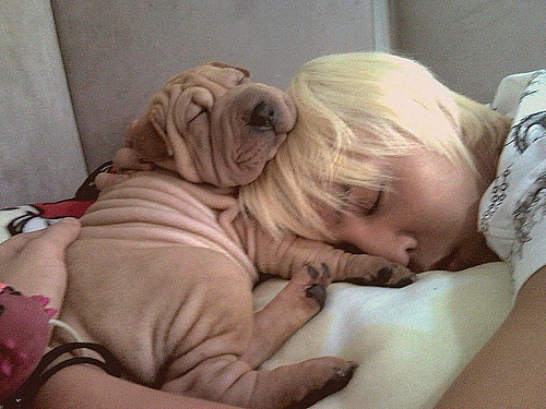 I hope it does not bother that there is a human too.. I love them both. :D The dog is Gaho, and he Is G-Dragon (: