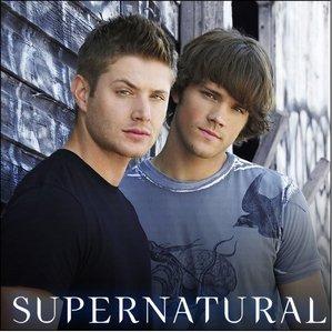 my kegemaran tunjuk is Supernatural and i like pie :D