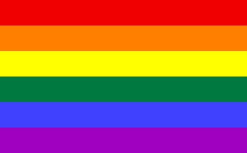 the gay flag is a rainbow.. dur (not trying to judge)