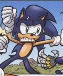 King Sonic Acorn