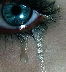 Tears started to slip down my cheek. I glared at him, tears falling from my eyes.