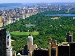 """The sun shone brightly over Central Park, the famous tourist attraction of New York."""