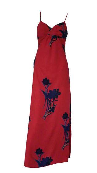 Breanna's dress that she wore to Hayvenhurst