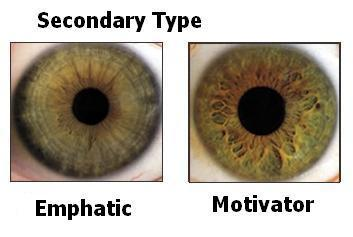 The eyes and Personality - Personality Test - Fanpop
