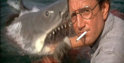 """ your gonna need a bigger boat"""