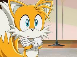 Tails, our fluffy furry freind, posible father
