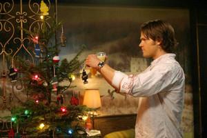 Decorate my 나무, 트리 tonight!