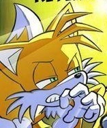 Tails the Fox: 愛 Shot Freedom Fighter