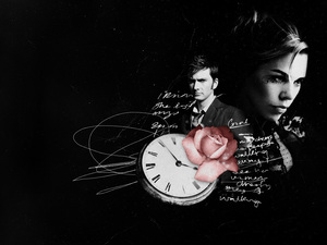 the doctor and rose.