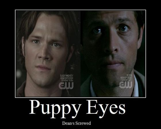 Cas' puppy Eyes