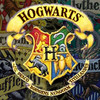 Hogwarts House Rivalry!