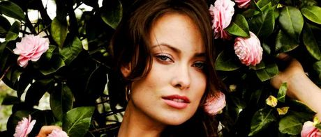 [b]Day Eight: An Actress anda Have Seen Countless Filem Of[/b] I've seen all the Olivia Wilde Filem