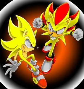 Dr.Robotnick estola some of Sonics DNA and put into shadow thoe Sonic was asleep like Shadow so they w