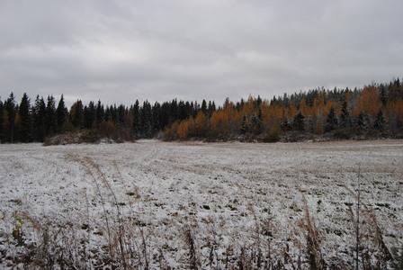 numero dos: Rawak snowy field