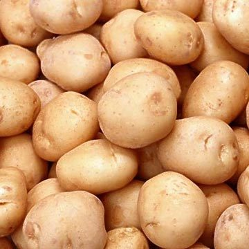 I can accept the potato is gone, now, because I have all these.