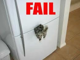 not road kill.... refrigerator kill!