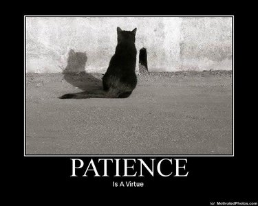 Patience my friend