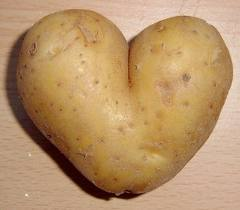 Today in class I kept getting the feeling that soon, I would throw a potato at someone (preferably Be
