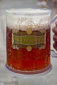 CAN'T HAVE A PARTY WITHOUT BUTTERBEER!!