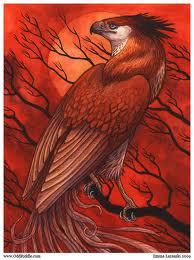 These Phoenix is by Emla on Deviantart. Her real name is Emma Lazauski next is winged lion