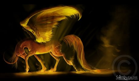 ^ That owl is so cute. I love owls.  Here's a shiny horse, or soise apparently which according to the