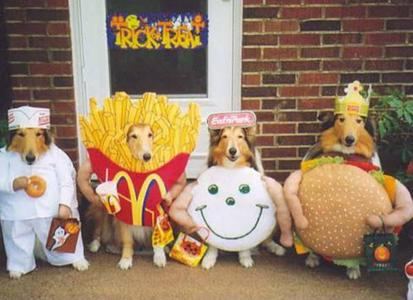 These guys have their costumes on already to party :D