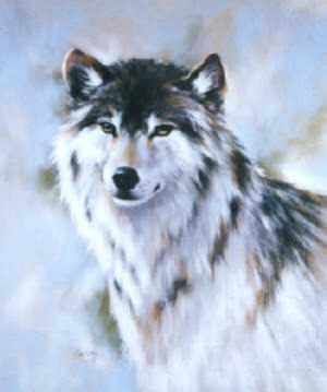 My name is Ashley and my wolf name is Sky I'm a girl :D White with black on the head and some stripes