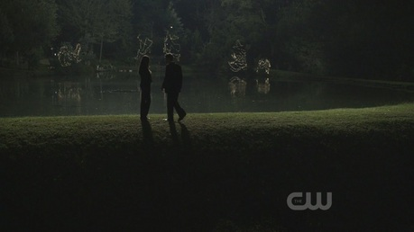 18. Stefan and Elena holding hands...:D