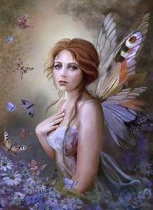 蝴蝶 Fairy.....