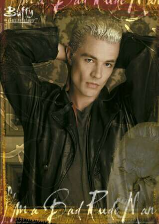 Edward Cul- Wait, you said Vampire, not fairy.  Sorry! I&#39;ll try again:<br /> <br /> Spike &lt;3