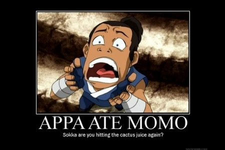 Sokka: Appa ate Momo! Katara: Appa ate Momo no Sokka: That's what Appa would have us believe.