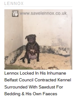 更多 About Lennox! Here is a picture of the hell that The Government of Northern Ireland is keeping