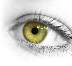 http://quizilla.teennick.com/quizzes/18368718/what-lies-behind-your-eyes What lies behind your eyes?