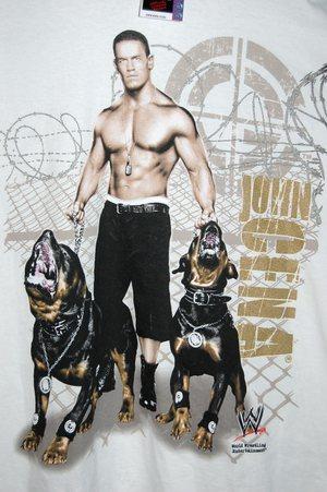 Next: John Cena At Money In The Bank 2010! :)
