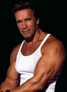 I've created a spot for one of the most iconic actors out there. So if you're a 粉丝 of Arnold's work