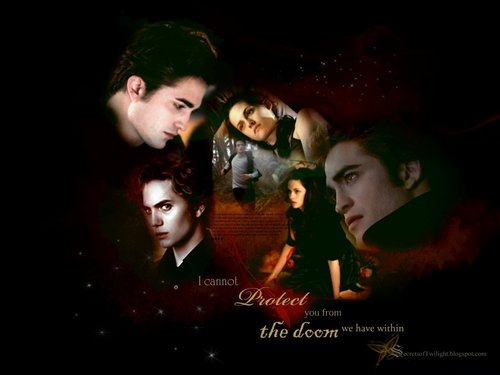 twilight series images edward amp bella hd wallpaper and