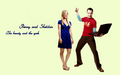 the-big-bang-theory - Beauty and geek wallpaper