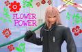 फूल Power
