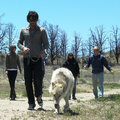 Joe and Thunder - sookie-and-alcide photo