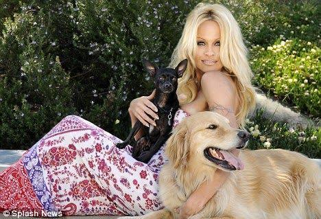 Pamela And Her Dogs